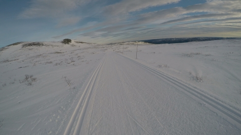 2017 Fat Viking Race Pics - alone view on XC ski track