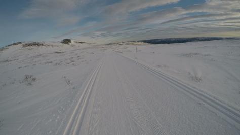 2017 Fat Viking Race Pics - alone view on XC ski track