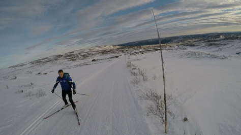 2017 Fat Viking Race Pics - passing XC skier 1