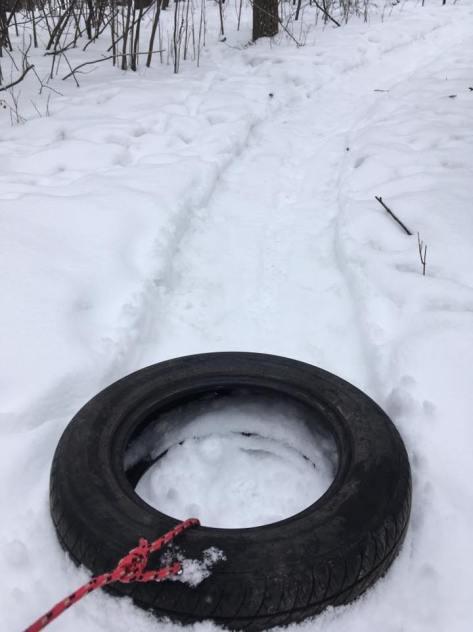 St Norbert Loop Trail - Marty Roy Feb 2017 - 3