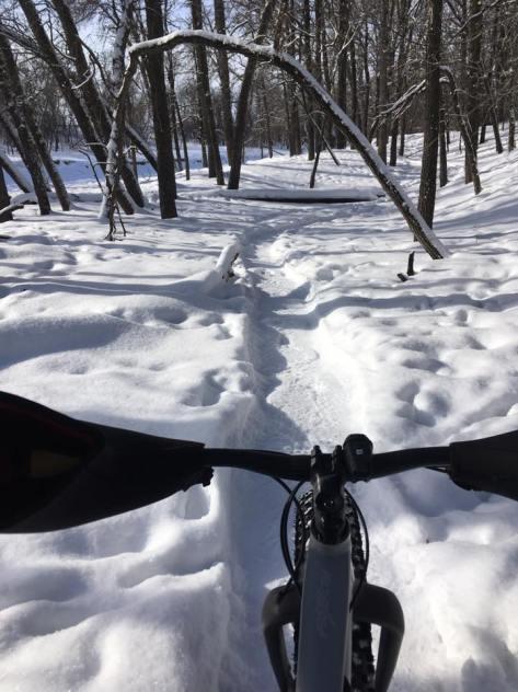st Norbert Trail Loop - 6 Feb 2017 - Marty Roy - 2