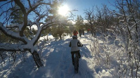 Bur Oak Fatbiking 11 Dec 16 - 38